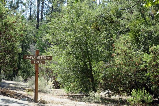 Idyllwild Nature Center:  loop trail signs make it easy