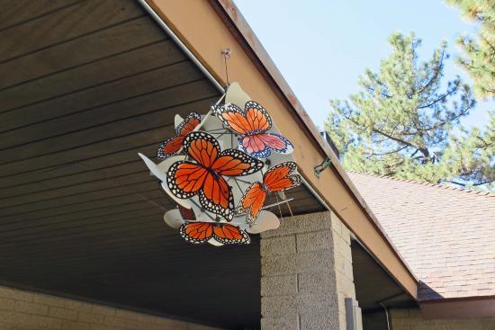 Idyllwild Nature Center:  hanging near entrance