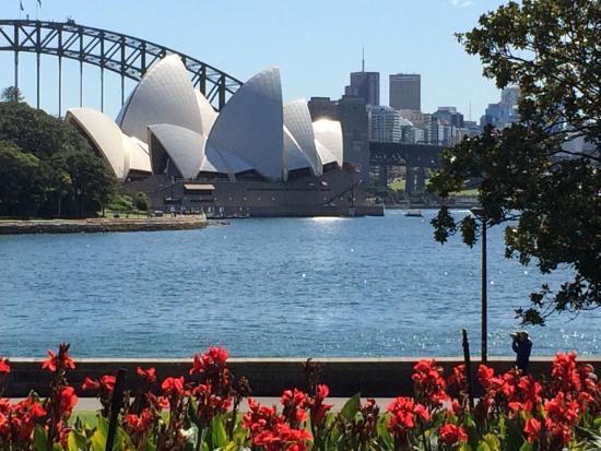 how to get to botanical gardens sydney