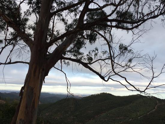 Inn Albergeria Bica-Boa : Beautiful view