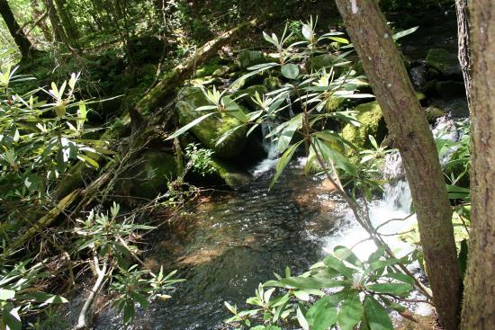 Greenbrier Creek - Garden of Eden Cabins, Cosby, TN