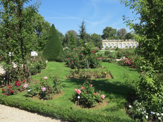 Bois de Boulogne jardin de bagatelle roseto