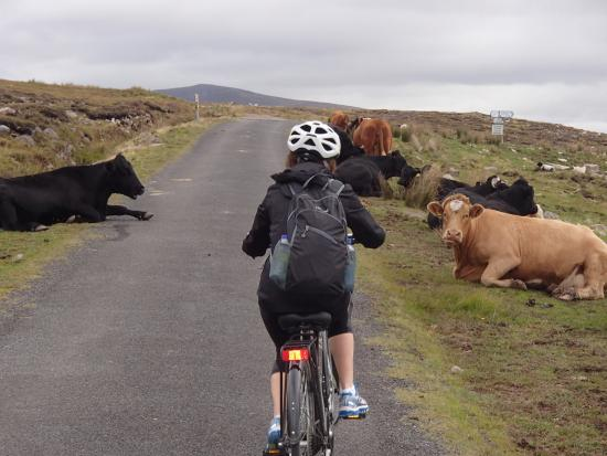The Great Western Greenway: A different view of Ireland