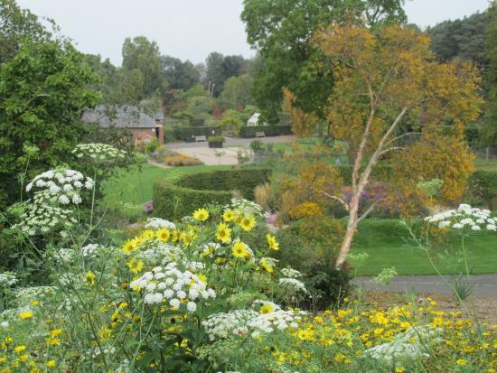 ness botanical gardens picture of ness botanic gardens ness tripadvisor