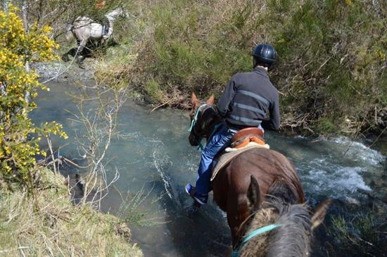 Hanmer Springs, Νέα Ζηλανδία: The rivers