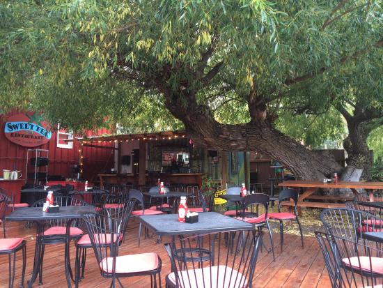 View Of The Tree Canopy Dining Experience Picture Sweet Pea Johnny B Good S Diner Steamboat Springs Restaurants