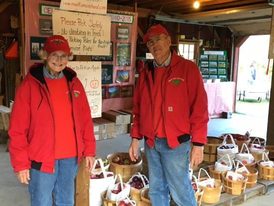 East Dorset, VT: Pick the right farmers to ensure delicious apples. Mad Tom's is an orchard lover's delight!