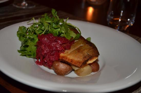 Terrafina Restaurant: Locally raised arctic char.