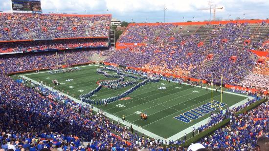 University of Florida照片