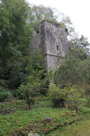 Lanivet, UK: The Tower