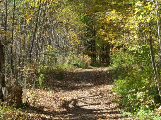 The Only Hill On The Trail Picture Of Terra Cotta Conservation - 6 scenic hikes in halton hills