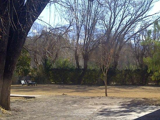 Foto de posada san eduardo san juan el jardin tripadvisor for Camping el jardin san juan