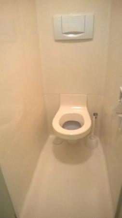 Remiremont, Γαλλία: Toilet