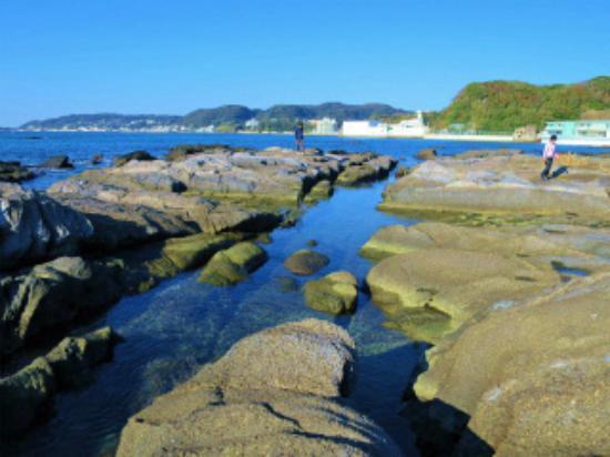 天神 島 臨海 自然 教育 園