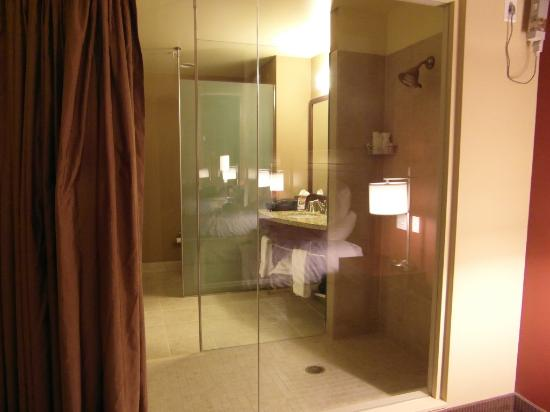 Riverside Casino & Golf Resort: Curtain between the shower and the room. Yep that's a toilet behind that 2nd glass enclosure.