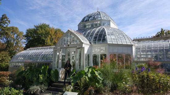 Excellent Victorian Greenhouse Filled With Living Plants Exotic And Home Remodeling Inspirations Basidirectenergyitoicom
