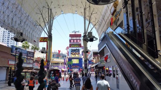 how to read a vegas line