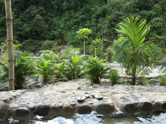 Asin Hot Springs: 温泉からの景色がすてきです。
