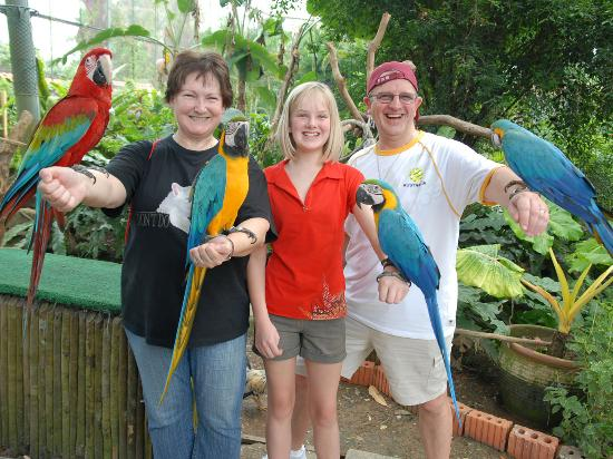 Sentosa Island, Singapore: Butterfly Park & Insect Kingdom