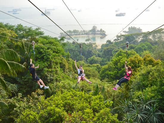 Sentosa Island, Singapore: MegaZip Adventure Park