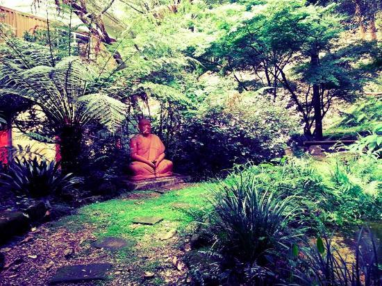 Mangrove Creek, Austrália: Garden for meditation