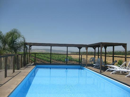Sharona, Israël: Swimming Pool
