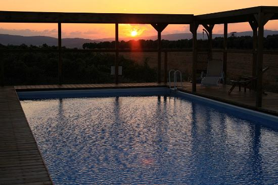 Sharona, Israel: Swimming Pool