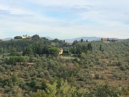 Agriturismo policleto updated 2017 b b reviews province of florence italy bagno a ripoli - Agriturismo bagno a ripoli ...