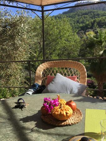 Son Bleda: The setting