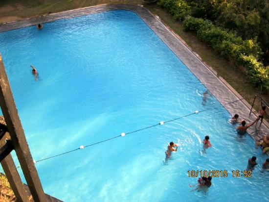 Left Wing Pool