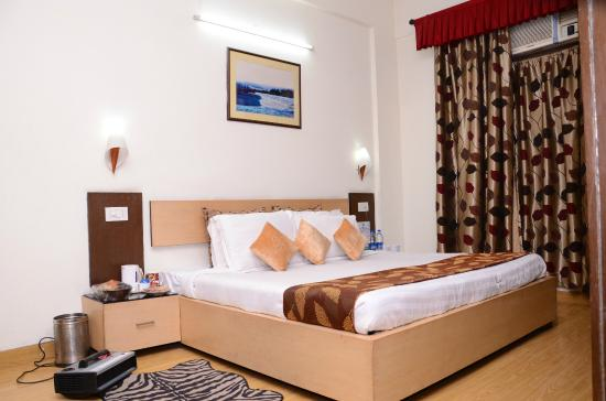 Hotel Shree Hari Niwas: Deluxe Room