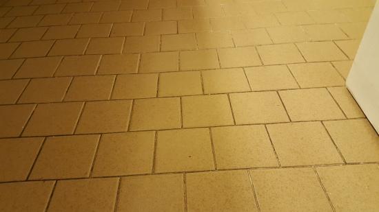 Country Hearth Inn & Suites Abilene: Filthy tile.