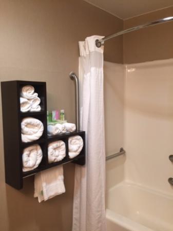 Holiday Inn Express Dublin: Bathroom