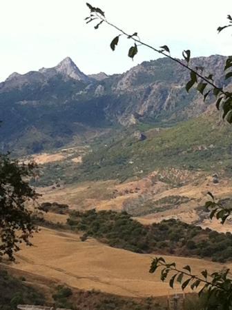 El Tejar : View from the villa
