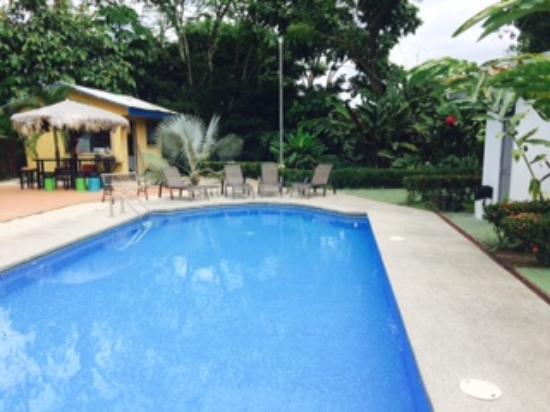 Mayol Lodge : pool area