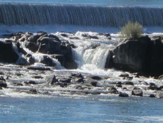 Snake River Greenbelt: Idaho Falls