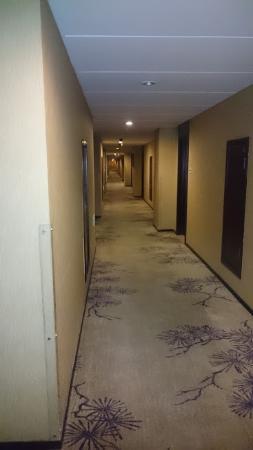 Jingtailong International Hotel: 廊下