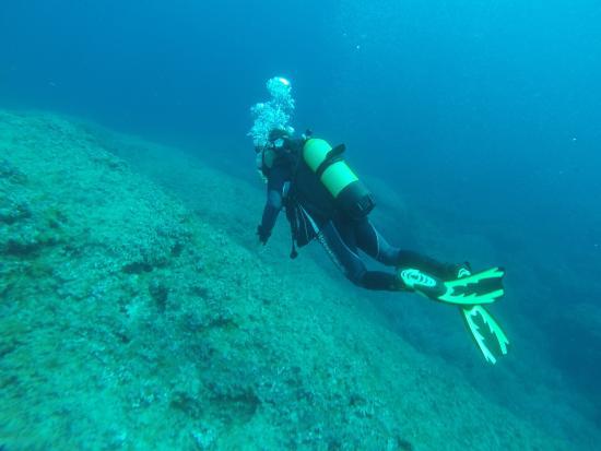 Cala Ferrera, Spain: plongée à  cala d'or