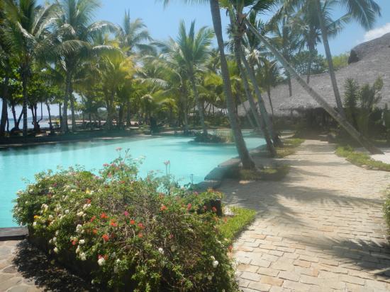Ravintsara Wellness Hotel: piscine