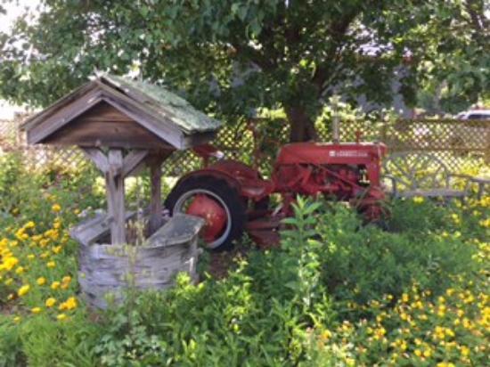 Hidden Valley Motel: Old tractor hidden in the garden.