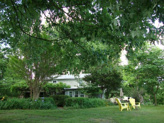 New Market, VA: The Cottage and grounds