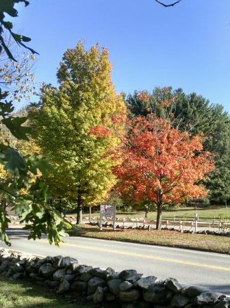 Longfellow's Wayside Inn: Autumn colors