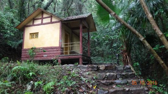Panlong Paradise Resort: forest cottage