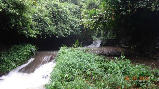 Deqing County, الصين: river, walkway in jungle