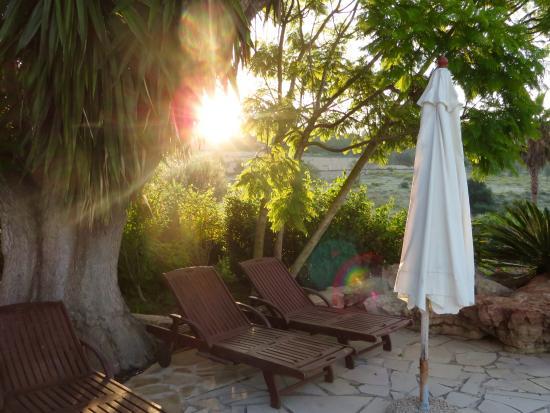 Finca La Colina: Stoelen naast het zwembad La Colina