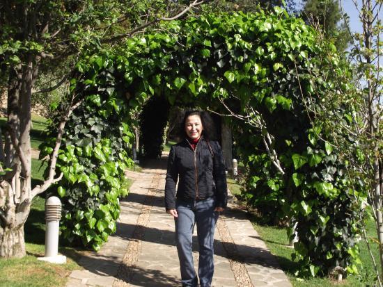 Hotel Baruk Teleferico y Mina: jardin