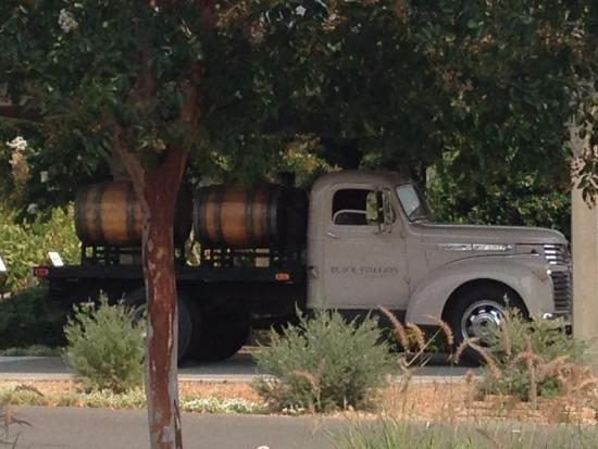 Black Stallion Winery: outside