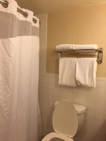 Holiday Inn Denver Lakewood: Nice room
