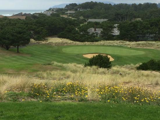 Salishan Lodge and Golf Resort Spa: Challenging Par 3