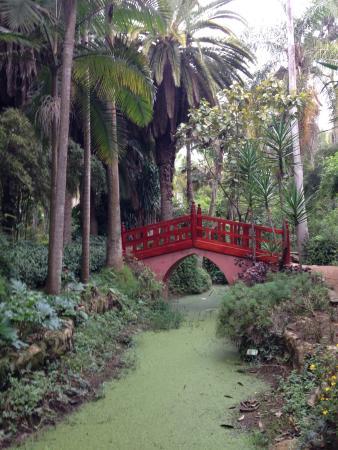 Les Jardins Exotiques de Bouknadel : Beautiful Bridge